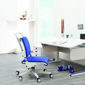 Apie augančius baldus ir kitas ergonomikos paslaptis